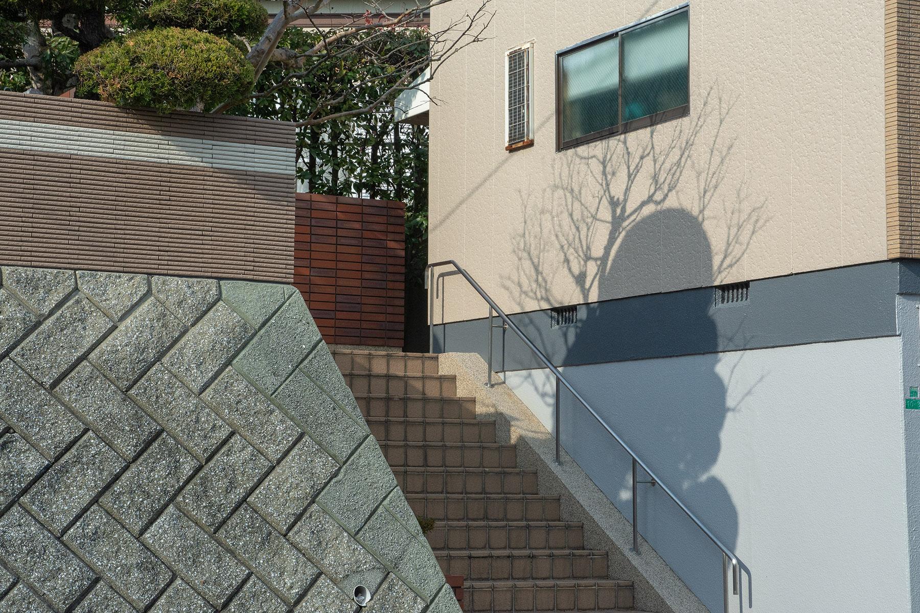 6_YJ_My Neighbour.jpg